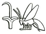 rush-bee